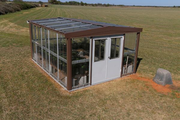Greenhouse - 12 x 15